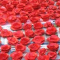 Lest We Forget, poppies